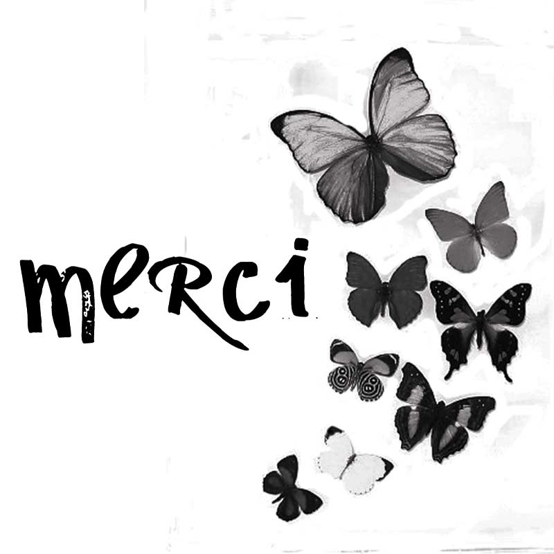 "Carte message papillons "" Merci """