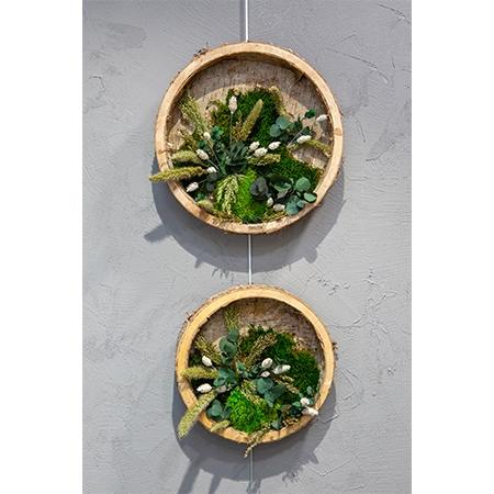 Cadre rond en écorce, plantes stabilisées et séchées