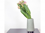 La botte de Tulipes